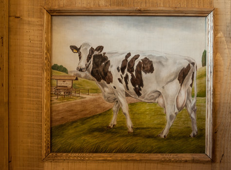 Painting cow